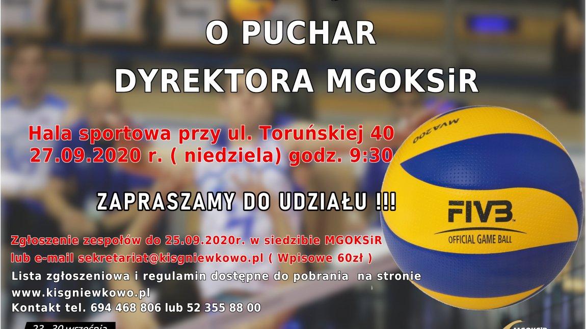 Turniej Siatkówki o Puchar Dyrektora MGOKSiR